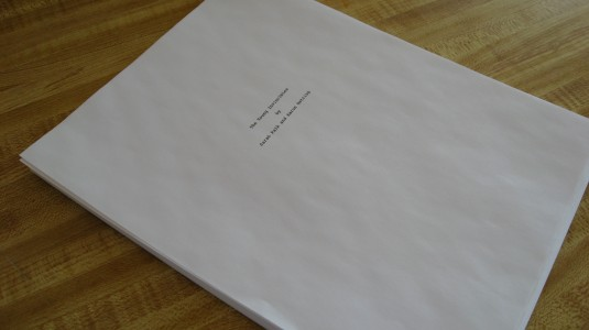 The Young Invincibles Script